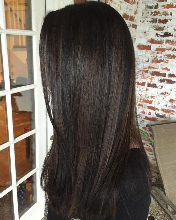 Light brown highlights on black hair brown hairs 20chestnut highlights on black pmusecretfo Choice Image