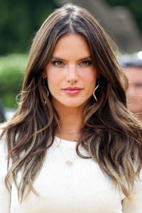 alessandra ambrosio brown hair