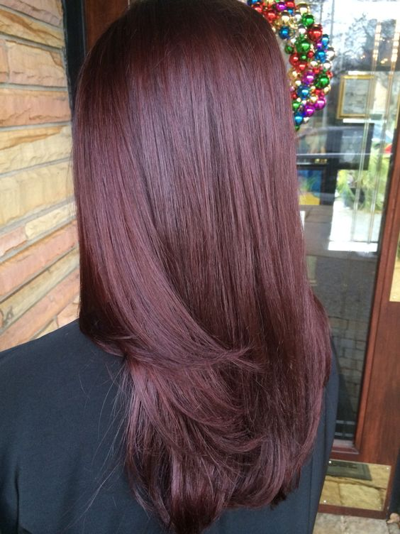 30 Incredible Mahogany Brown Hair Color Ideas for 2019