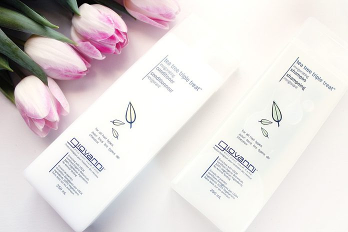 giovanni tea tree shampoo conditioner