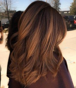 golden chestnut highlights
