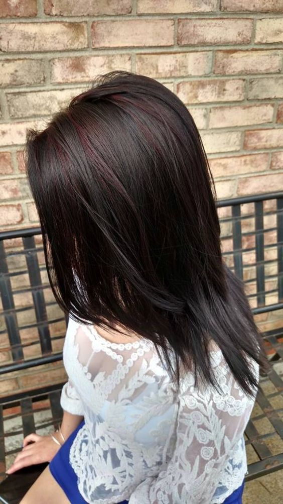 These red highlights are subtle enough to be almost unnoticeable from a  distance. For someone looking for a very slight change in black or dark  brown hair, ...