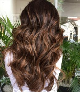 Warm Dark Brown Hair with Blonde Highlights