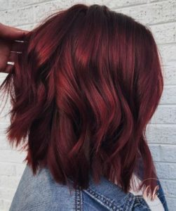 Mulled Wine Hair With Cinnamon Highlights