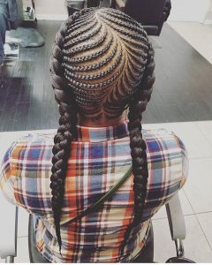 double fishbone braids